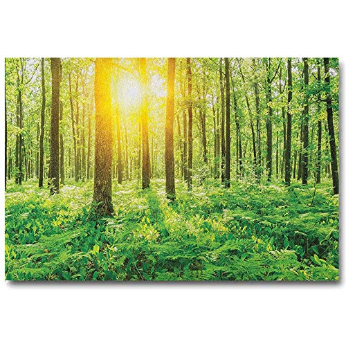ScottDecor Woodland Bedroom Poster Forest Springtime Freshness Theme Foliage Sunbeams Sunrise Nature View Scene Gifts for Women Green Yellow L20 x H40 Inch