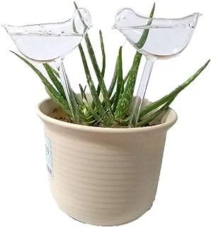 Mehome Self Watering Globes Aqua Bulbs Hand-Blown Mini Glass Automatic Plant Waterer Bird Decorative Design,Set of 2