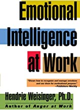 Best hendrie weisinger emotional intelligence at work Reviews
