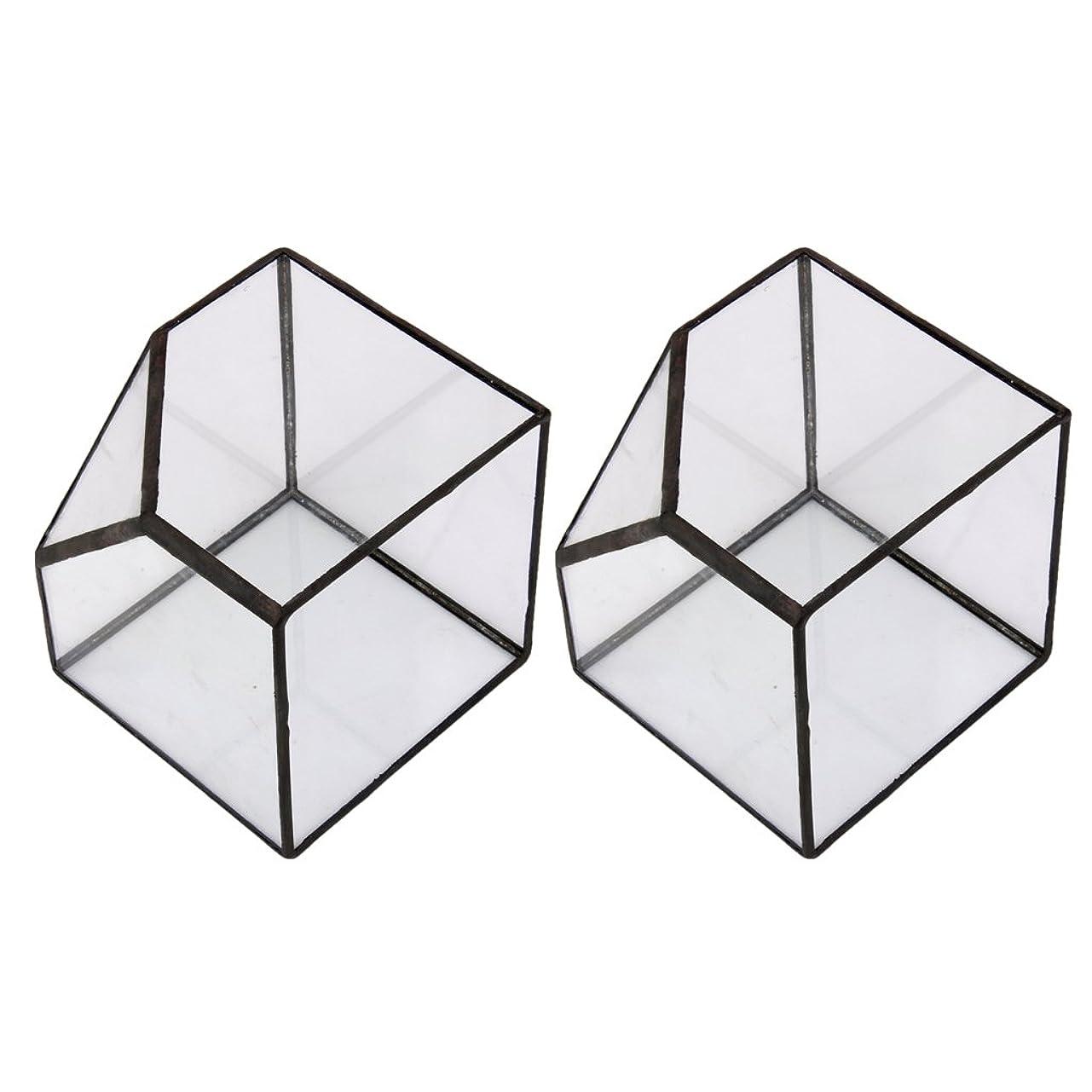 グリースロイヤリティ三十FLAMEER 2xフラワーポットランドスケープジオメトリックキューブテラリウムミニグラスハウスプランターS