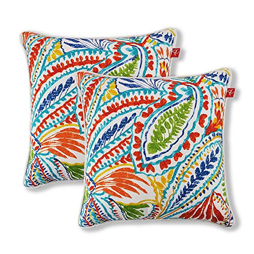 Pcinfuns Set of 2 Patio Indoor/Outdoor All Weather Decorative Throw Pillow Cover Cushion Case for Replacement 18' x 18'-Phoenix
