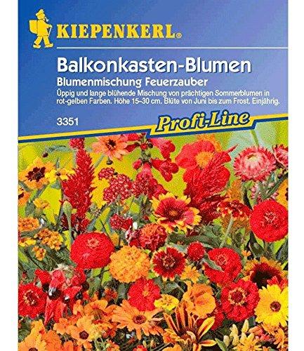 Kiepenkerl Blumen-Mix 'Feuerzauber', 1 Tüte Samen