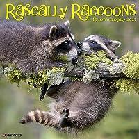 Rascally Raccoons 2021 Calendar