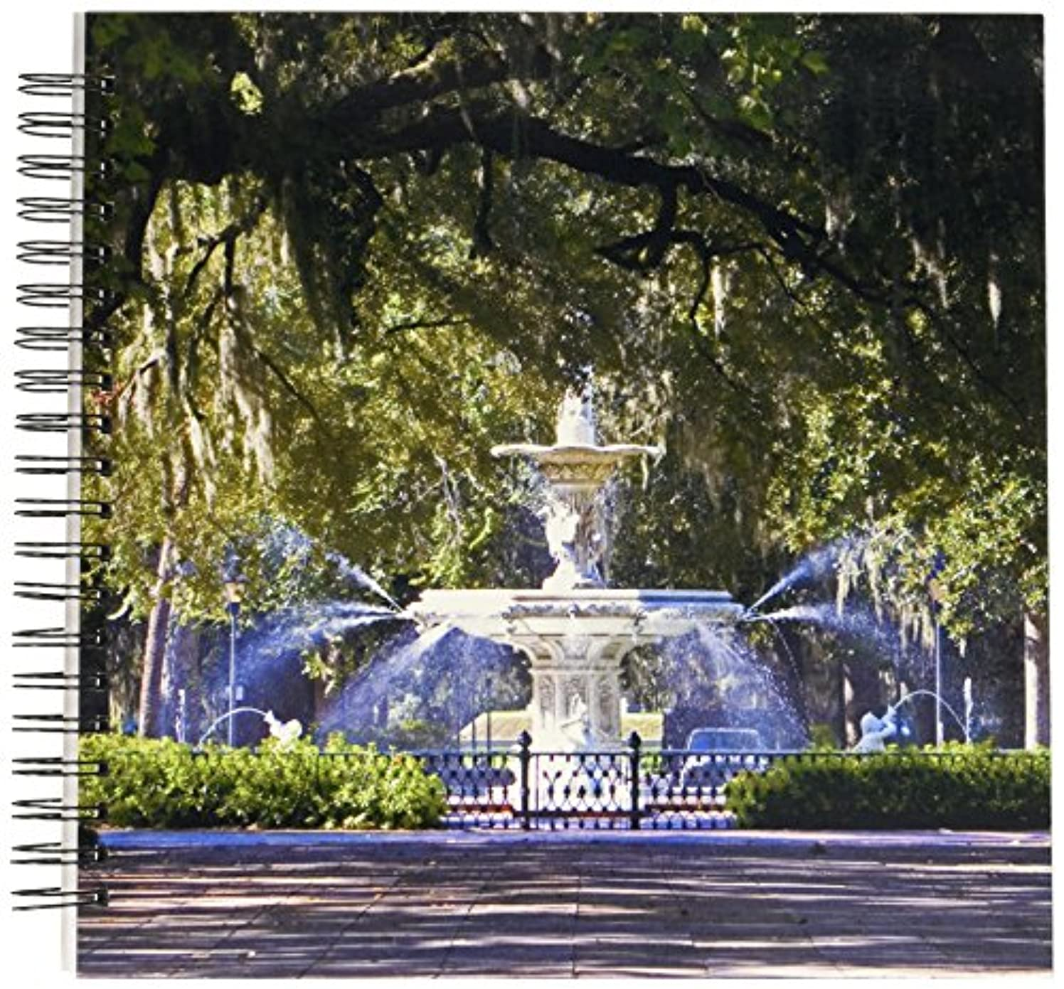 3dRose db_89316_2 Water Fountain, Forsyth Park, Savannah, Georgia-Us11 Dfr0070-David R. Frazier-Memory Book, 12 by 12-Inch