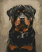 Painting by Numbers DIY Oil Painting for Adult Black Dog, Animal Canvas Print Wall Art Decoration 40X50Cm