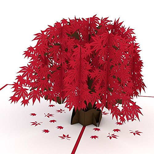 Lovepop Japanese Maple Pop Up Card - 3D Card, Mother�s Day Pop Up Card, Card for Mom, Card for Wife, Greeting Card, Anniversary Pop Up Cards, Pop Up Birthday Card and Tree Card, Maple Tree Card