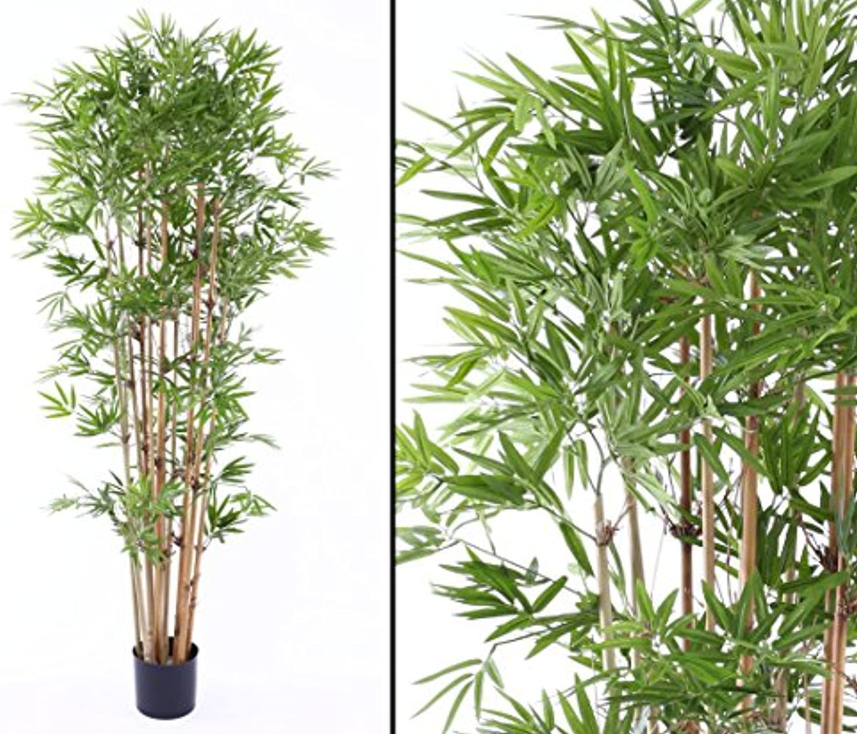 Bambus, mit UV Schutz, 2400 Bltter, Hhe ca. 180cm – Kunstpflanzen Bambusbaum künstlich