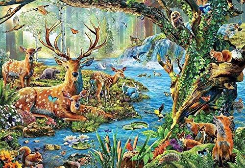 Amnogu Puzzles Forest Life Puzzle-1000 Piezas