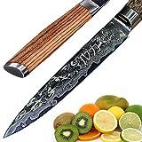 Cuchillo de acero inoxidable Damasco 13cm, aspecto martillado, acero japonés VG-10 afilado 67 capas, cuchillo damasco con mango ergonómico