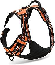 harness clip