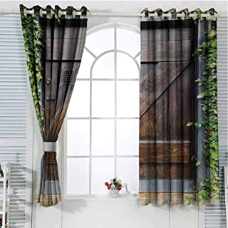Rustic Black Out Window Curtain 2 Panel Small Spanish Style Dark Stained Wood Door Secret Garden with Grated Window Picture Living Room Curtains for Bedroom W96 x L96 Inch Brown Green