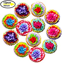 Cinco De Mayo Decorations Fiesta Tissue Pom Paper Flowers - Mexican Carnival Rainbow Theme Party Supplies 16