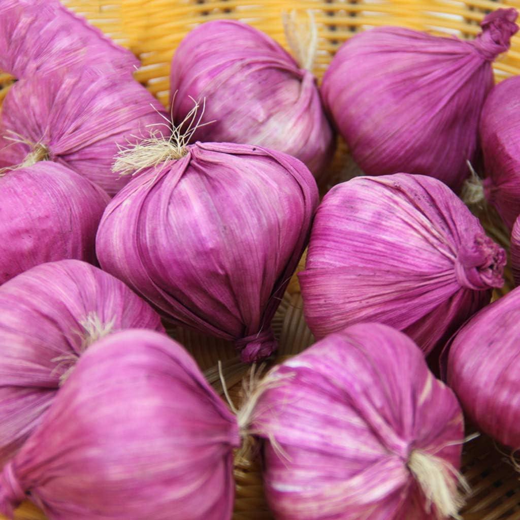 decorazione per casa realistico Schiuma Multisized Purple feste festival set da 10 Lunji Aglio di verdure artificiali