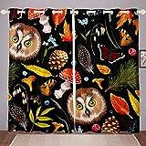 Loussiesd Cortinas de búho, diseño de mariposa, búho, para ventana, para niños, adolescentes, dibujos animados, animales, setas, ventanas, cortinas, decoración de habitación, 66 x 90 cm