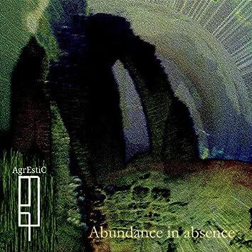 Abundance in Absence