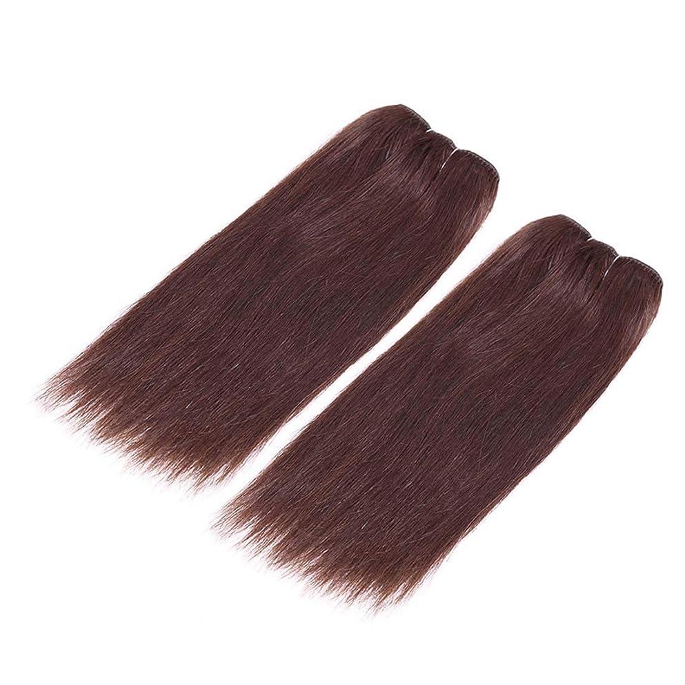 動物園天気今晩BOBIDYEE ハイエンドリアルヘアかつら女性のロングストレートヘアカーテンパーティードレスアップかつら合成髪レースかつらロールプレイングかつら (サイズ : 8inch)