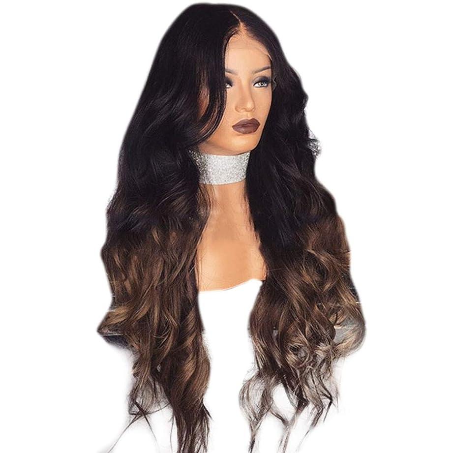 感情図書館ソースYrattary 女性のマイクロボリュームは、大きな波状の長い巻き毛に分割されています。染め勾配化学繊維かつら複合毛レースかつらロールプレイングかつら (色 : Photo Color, サイズ : 65cm)