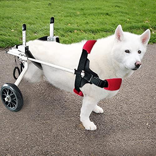 Silla De Ruedas Para Perros Patas Traseras,Silla De Ruedas Para Perros Talla M,Se Utiliza Para Perros Con Discapacidades En Las Patas Traseras,ArmazóN De Apoyo Auxiliar Para Caminar De RehabilitacióN