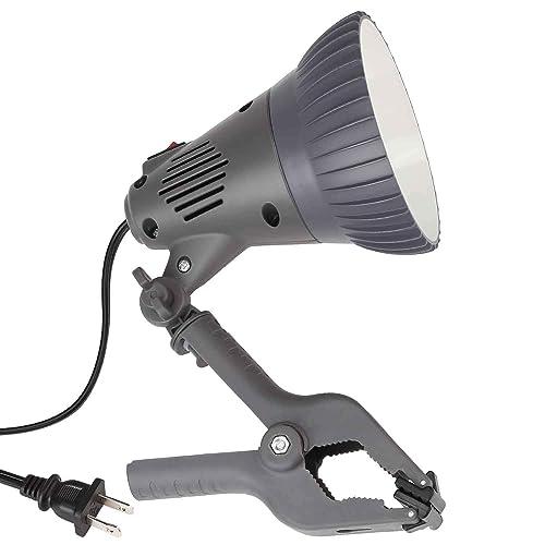 Fantastic Utility Lamp Clamp Amazon Com Ibusinesslaw Wood Chair Design Ideas Ibusinesslaworg