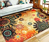EUCH Contemporary Boho Retro Style Abstract Living Room Floor Carpets,Non-Skid Indoor/Outdoor Large Area Rugs,39'x59' Lotus