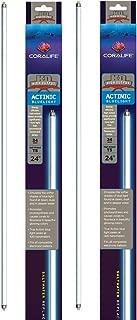 Coralife 2 Pack of Actinic T5 H.O. Lamps, 24 Inch, 24 Watt, Replacement Aquarium Light Bulbs