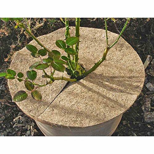 Star 3073230 Kokos-Mulchscheibe Durchmesser: 45 cm