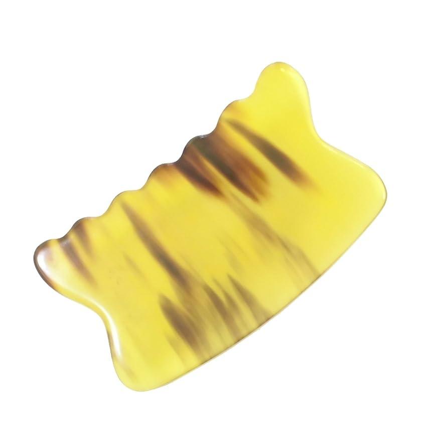 セミナー困ったコードかっさ プレート 希少59 黄水牛角 極美品 曲波型