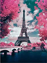YEESAM ART DIY Paint by Numbers for Adults Beginner Kids, France Paris Eiffel Tower, Romantic Cherry Blossom 16x20 inch Linen Canvas Acrylic Stress Less Number Painting Gifts (France, with Frame)