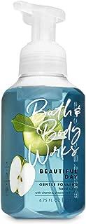 Bath & Body Works Gentle Foaming Hand Soap Beautiful Day
