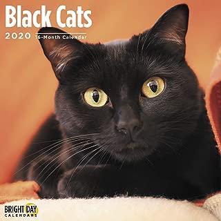 Best black cat calendar Reviews