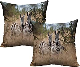 Freekite Africa Pillow Cases Kenyan Zebras in High Bushes Suitable for Sofa