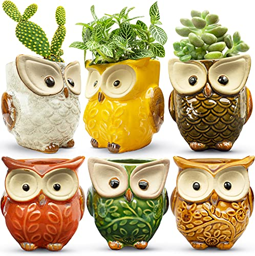 HOMESCAPE CREATIONS Owl Succulent Animal Planter Pot - 2.6 Inch Small Ceramic Glaze Container with Drainage - Tiny Holder for Plants, Flowers, Cactus Set of 6