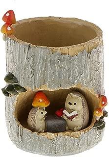 Tinksky Cute Hedgehog Flower Sedum Succulent Pot Planter Bonsai Trough Box Plant Bed Office Home Garden Pot Decoration