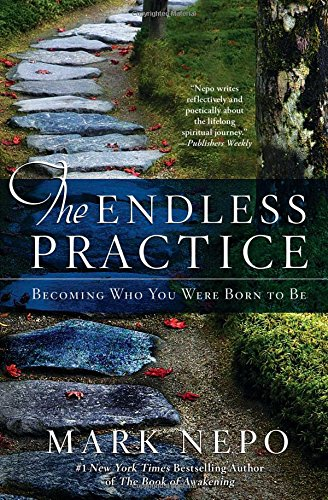 Image OfThe Endless Practice: Becoming Who You Were Born To Be