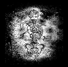 Rodentia : The Best of Dark Roots Music