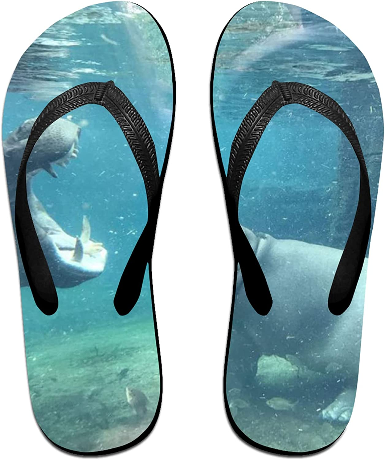Women's Men's Flip Flop Slippers Max 62% OFF Beach Adults Hippo Classical Courier shipping free