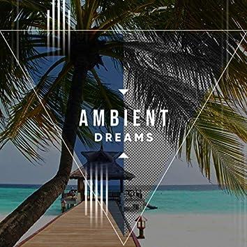 # 1 Album: Ambient Dreams