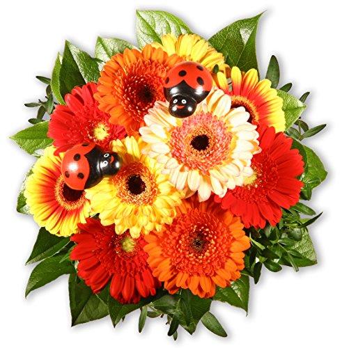 Blumenstrauß Blumenversand Gerbera und Co. +Gratis Grußkarte+Wunschtermin+Frischhaltemittel+Geschenkverpackung