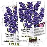 Seed Needs, Blue...image