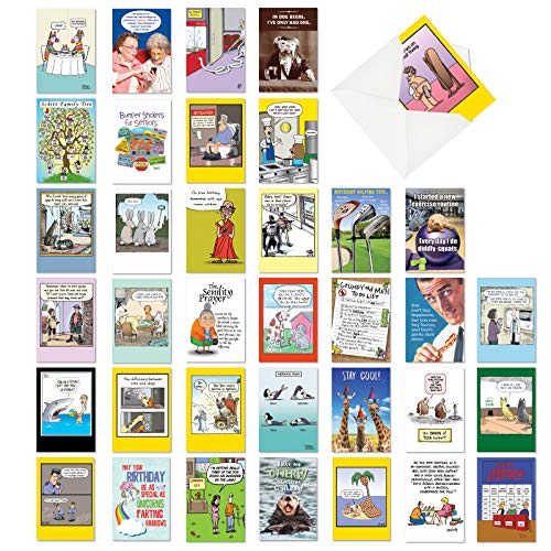NobleWorks - 36 Assorted Funny Birthday Cards - Adult Bulk Boxed Set, Humor Cards with Envelopes - Birthday Bestsellers AC2911BDG-B1x36