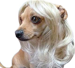 Best dog with wig Reviews