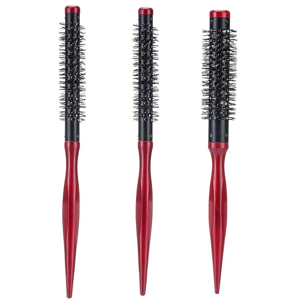自分の力ですべてをする疫病達成可能B Blesiya 3本 ヘアスタイル櫛 プロ ヘアーサロン 美容師 ヘアブラシ 髪形 ヘアブラシ