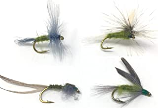 Feeder Creek Fly Fishing Trout Flies - Blue Wing Olive Assortment - 32 Wet and Dry Flies - 4 Size Assortment 12,14,16,18 (2 of Each Size) Blue Wing Olive, Parachute, Nymph, and Wet