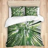 GOCHAN Funda de edredón,Árboles de bambú Altos de la Selva Tropical en la arboleda Estilo exótico Imagen del Tema de la Naturaleza, Juego de Cama Suave de Lujo de 3 Piezas tamaño Gemelos