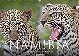 Namibia - Die Tierwelt (Wandkalender 2019 DIN A2 quer): 12 wunderschöne Tieraufnahmen aus Namibia von dem Fotografen und Grafik-Designer Olaf Bruhn (Monatskalender, 14 Seiten ) (CALVENDO Natur)