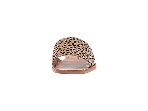 El Vita Dolce Cato Leopard Calf Pelo xOPRPIqw