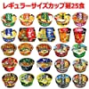 格安カップ麺レギュラーサイズ 大集合 スナオシ 明星 評判屋 至極の一杯 サンポー 25個セット おまけ付き 関東圏