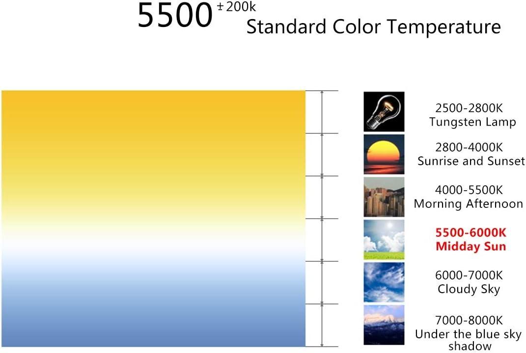 Color : Color2 US Plug Lighting /& Studio 200cm Studio Box 6 Light Strip Bars 240W 5500K White Light Photo Lighting Shooting Tent Kit for Clothes//Adult Model Portrait