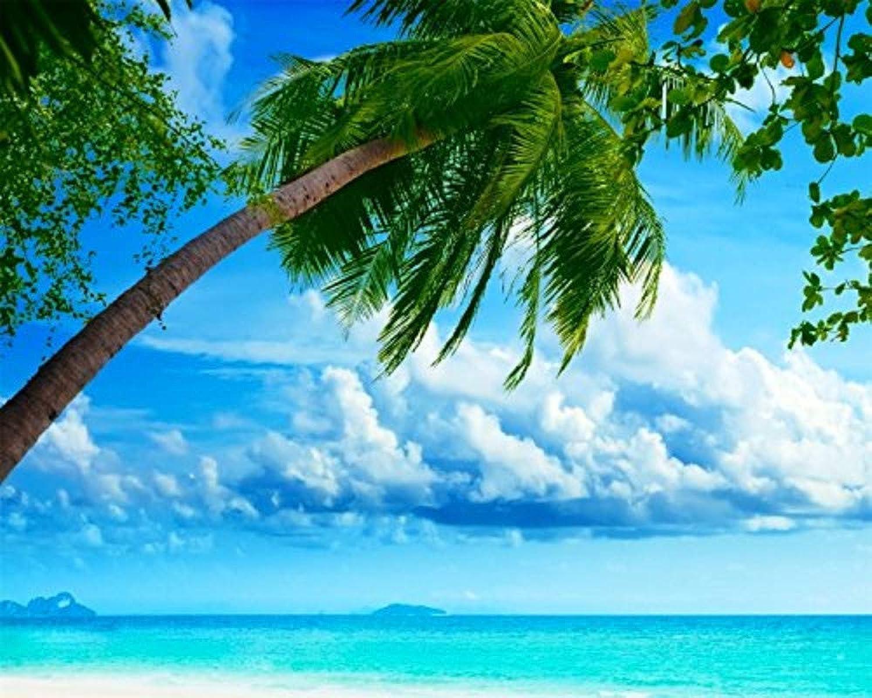 Malen Sie Nach Nach Nach Zahlen Für Kinder DIY Exotic Seaside Summer Für Erwachsene 40x50cm with Combination Frame B07NMRVKGJ   Online  a28413