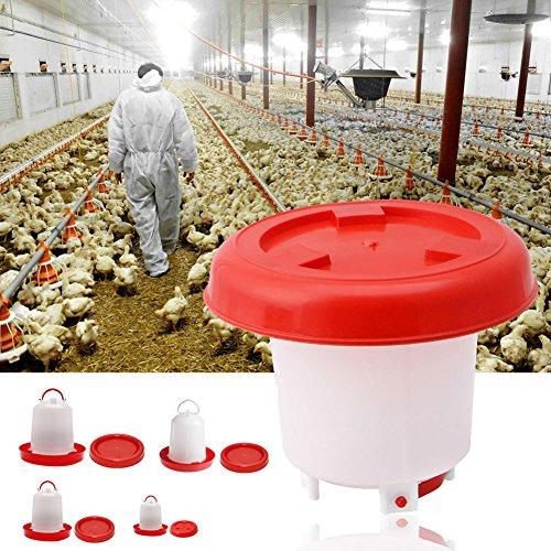 ypypiaol - Comedero para Bebedero de Aves de Corral, gallina